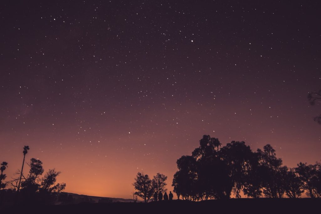 Phen24 se décompose en gélules de jour et gélules de nuit