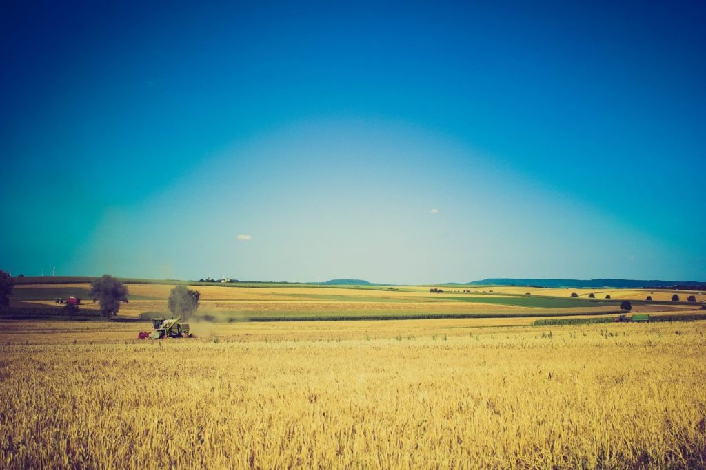 Méthode d'agriculture moderne