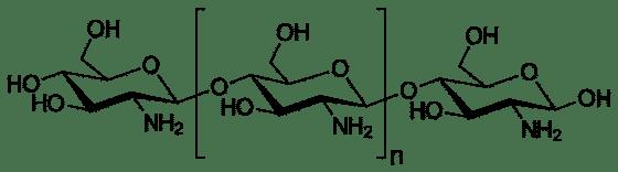 Molécule de Chitosan