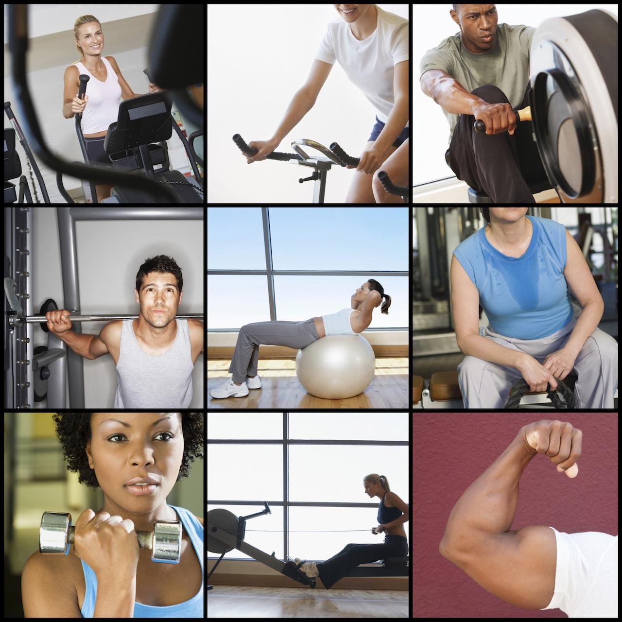 Influence du morphotype sur la musculation