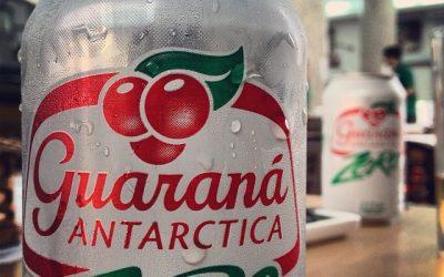Guarana : notre guide, notre avis