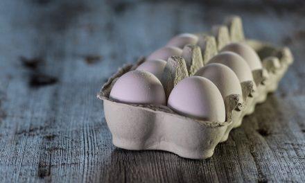 L'importance des protéines pour maigrir