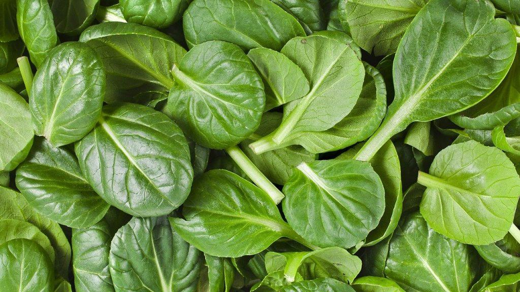 aliments riches en vitamine C,
