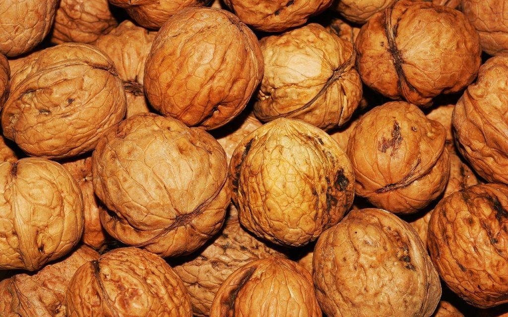 Des noix pour ne pas grossr