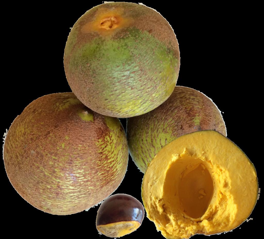 Fruit comùmençant par L